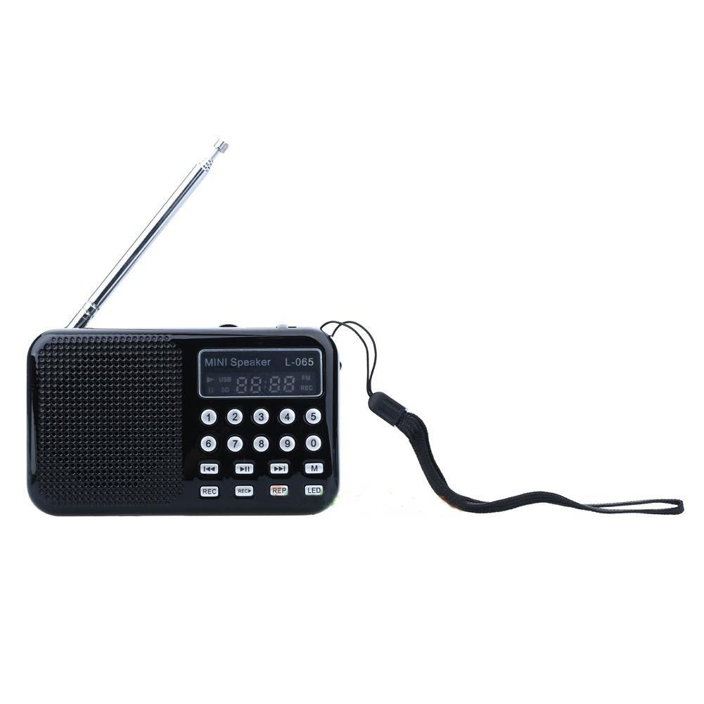 Skaitmeninis Nešiojamas FM Radijo Imtuvas 70-108Mhz (USB, SD, Li-ion baterija, prožektorius)